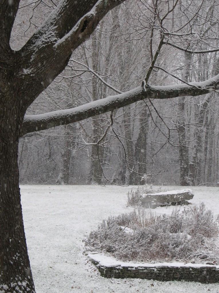 Snow2Gardens